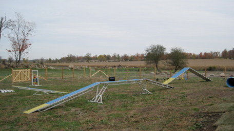 dog ranch inc photos (1).png