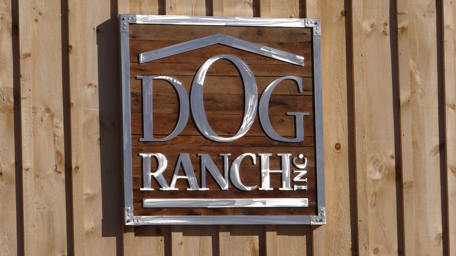 dog ranch inc photos (9).png